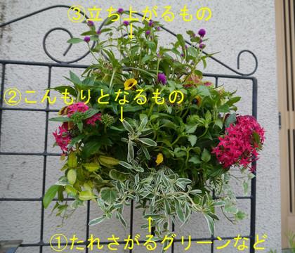 P1030501_2