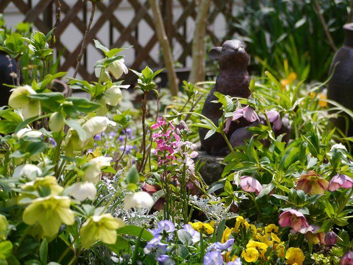 2012 3月末の庭