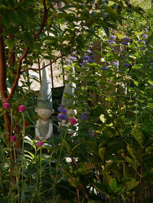 2013 秋の庭